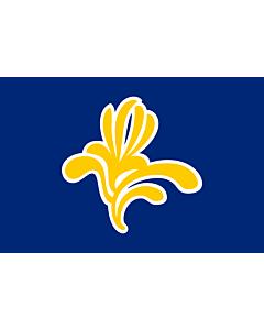 Fahne: Flagge: Bruxelles