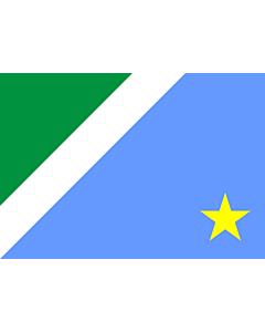 Fahne: Flagge: Mato Grosso do Sul