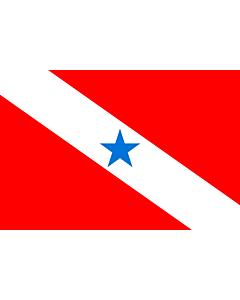 Fahne: Flagge: Pará