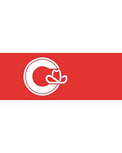 Fahne: Flagge: Calgary, Alberta