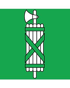 Fahne: Flagge: St. Gallen