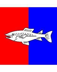 Fahne: Flagge: CHE Nyon | Swiss city Nyon | Miasta Nyon w Szwajcarii