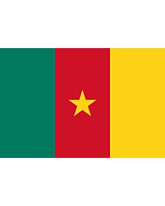 Fahne: Flagge: Kamerun
