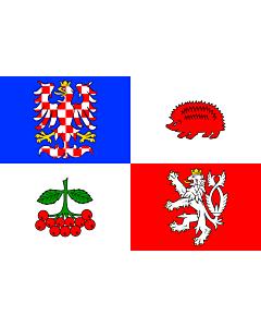 Fahne: Flagge: RegionVysočina