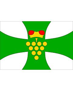 Fahne: Flagge: Domanin HO CZ | Municipal flag of Domanín village | Domanín, okres Hodonín