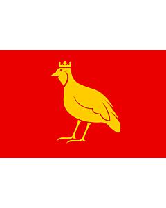 Fahne: Flagge: Aunis | French province of Aunis | L Aunis | Drapèu d Aunis