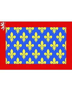 Fahne: Flagge: Fr département Sarthe | Sarthe | Département de la Sarthe