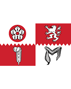 Fahne: Flagge: Leicestershire