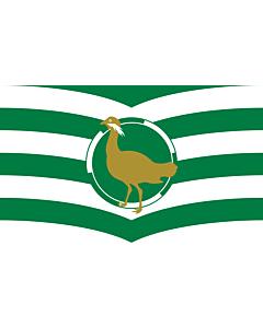 Fahne: Flagge: Wiltshire