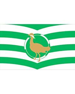 Fahne: Flagge: Royal Borough of Windsor and Maidenhead