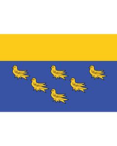 Fahne: Flagge: West Sussex