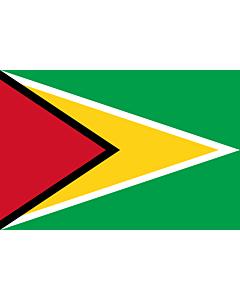 Fahne: Flagge: Guyana