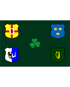 Fahne: Flagge: Ireland Rugby