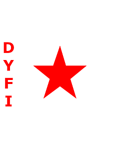 Fahne: Flagge: DYFI