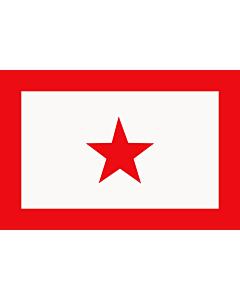 Fahne: Flagge: UNLF   L UNLF de Manipur