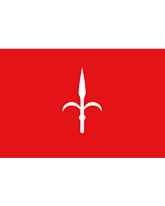 Fahne: Flagge: Provinz Trieste