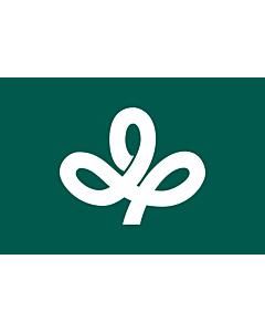 Fahne: Flagge: Präfektur Miyagi,