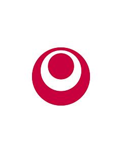 Fahne: Flagge: Präfektur Okinawa