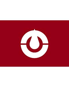 Fahne: Flagge: Kochi Prefecture | Kochi prefecture, Japan