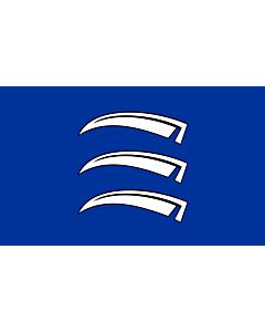 Fahne: Flagge: Triesen