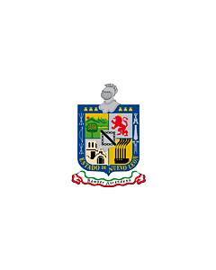 Fahne: Flagge: Nuevo León