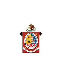 Fahne: Flagge: Oaxaca
