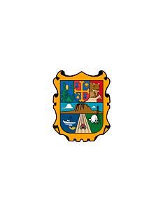 Fahne: Flagge: Tamaulipas