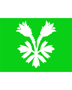 Fahne: Flagge: Oppland