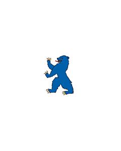 Fahne: Flagge: Buskerud