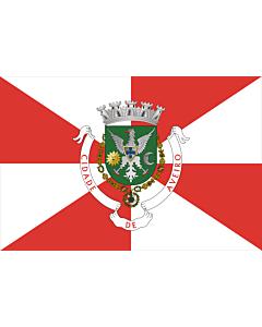 Fahne: Flagge: Aveiro