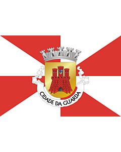 Fahne: Flagge: Guarda