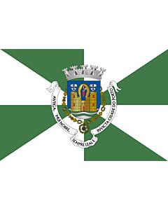 Fahne: Flagge: Porto