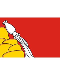 Fahne: Flagge: OblastWoronesch