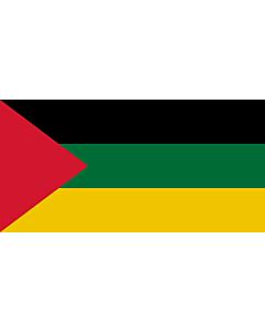 Fahne: Flagge: Hejaz 1926 | Hejaz from 1926 to 1932 | علم الحجاز من ١٣٤٤ حتى عام ١٣٥٠ | Флаг Хиджаза с 1926 по 1932 год