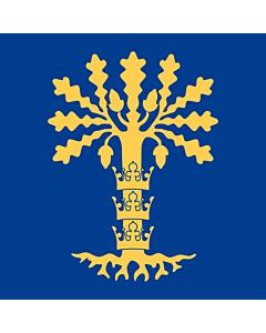 Fahne: Flagge: Blekinge