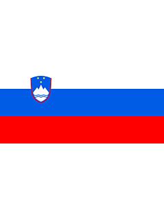 Fahne: Flagge: Slowenien