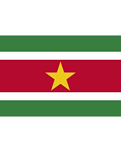 Fahne: Flagge: Suriname