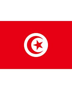 Fahne: Flagge: Tunesien