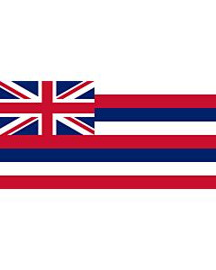 Fahne: Flagge: Hawaii