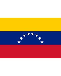 Fahne: Flagge: Venezuela
