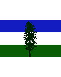 Fahne: Flagge: Cascadia | Cascadia, based on en Image Cascadian flag